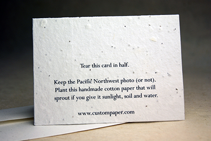 Back of all of our cards have planting directions(click to see larger image)