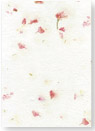 pink larkspur and seeds handmade paper