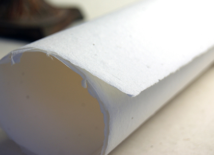 seed paper rolled sheets